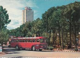 MILANO MARITTIMA - CERVIA - RAVENNA - IL GRATTACIELO - BUS / AUTOBUS / CORRIERA / FILOBUS / TRAM -1959 - Ravenna