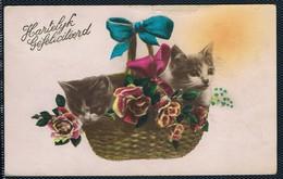 Chats  Dans Panier -cats -katzen- Poesjes In  Mand - Katten