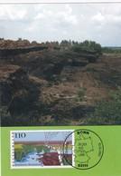 Germany 1997 Maximum Card: Nature; Tourism; Landscapes: Trees Bremen Nordlandschaft - Umweltschutz Und Klima