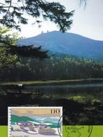 Germany 1997 Maximum Card: Nature; Tourism; Landscapes: Trees Bayerische Wald - Umweltschutz Und Klima