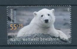 """Deutschland 2008 Umweltschutz. Eisbär """"Knut"""" Im Berliner Zoo. Einzelwert ** - [7] Federal Republic"""