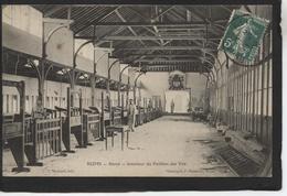 REIMS - Stand - Intérieur Du Pavillon De Tir - Reims