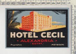 ETICHETTA LABEL ETIQUETTE  HOTEL CECIL ALEXANDRIA EGYPT - Etiquettes D'hotels