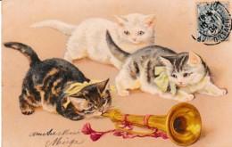 TRES BELLE FANTAISIE CHATS MUSICIENS REF 62217 - Katten