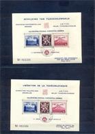 Nrs. E50/E51 Postgaaf ** MNH Prachtig - Commemorative Labels