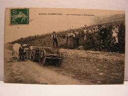 CPA 71 HAUTE SAONE SCENES CHAMPETRE VENDANGES A VERGISSON ANIMEE 575 - Francia