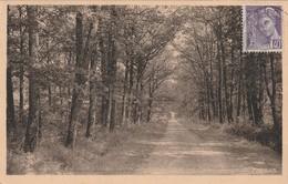 RANDAN Puy De Dôme 63 - Autres Communes