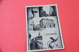 Bologna S. Agata Bolognese 1951 Ed. Pini - Bologna