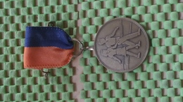 Medaille :Netherlands  - Avondvierdaagse . / Vintage Medal - Walking Association - - Nederland