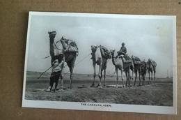 THE CARAVAN   ADEN     (1708) - Yemen