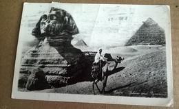 CAIRO SPHINAX AND PYRAMIDES    (1704) - Cairo