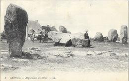 Carnac (Morbihan) Les Alignements Du Ménec, Attelage - Carte LL N° 8 - Carnac