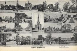 Souvenir Du Vésinet (Seine-et-Oise) Edition Nardot - Carte Multivues Non Circulée - Gruss Aus.../ Gruesse Aus...
