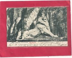 BELFORT . LE LION . TRES JOLI VERSO BEL AFFR DU 12-1-1902. DOS NON DIV . 2 SCANES - Belfort – Le Lion