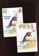 Belgie Andre Buzin Birds 2475 + Duostamp Mechelen 2008 2 X  Herdenkingskaart RR - 1985-.. Birds (Buzin)