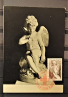 12 - 19 //  France - Croix Rouge 1950 - Maximumkarten