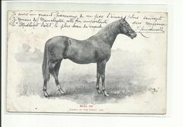 T;b; Cpa Cheval Course, BEND OR, Derby 1880, Timbre Anglais  (tous Frais + 1,30 ) - Chevaux