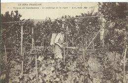 LE JURA FRANCAIS - TYPES ET COUTUMES - Le Sulfatage De La Vigne - France