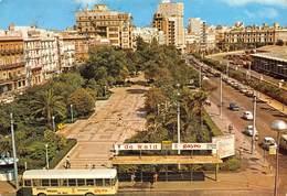 Espagne / Cadiz - Autobus - Avenida Ramon De Carranza - Dist. Papeleria - Cádiz