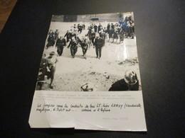 Photo 18x24cm Pompier - Obséques Du Lt Stiquel 18 Juin 1942 à Sailly En Ostrevent - Photo Cne Cuich - Pompiers
