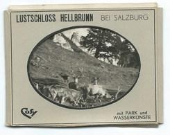 LOT DE 2 PHOTOS / LUSTSCHLOSS HELLBRUNN BEI SALZBURG MIT PARK UND WASSRKUNSTE / PETIT FORMAT - Lieux