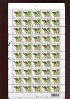 Belgie Andre Buzin Birds 3264 Full Sheet MNH 28/6/2004 - 1985-.. Birds (Buzin)