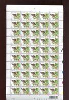 Belgie Andre Buzin Birds 3264 Full Sheet MNH 10/8/2004 - 1985-.. Birds (Buzin)