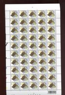 Belgie Andre Buzin Birds 3199 Full Sheet MNH 1/6/2004 - 1985-.. Birds (Buzin)
