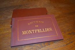 Album Photos Souvenir Année 1900 Montpellier Palavas Les Flots AFN Carnaval Montpellier Chars Calèche - Albums & Collections