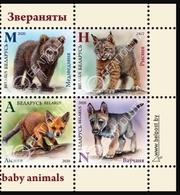 Belarus 2020 4 V MNH Wild Baby Animals Fox Cub Cub Bear Cub Trotter Renard Loup Ours Lynx - Orsi