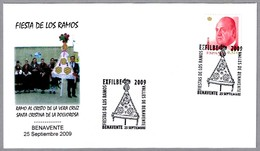 FIESTA DE LOS RAMOS. Benavente, Zamora, 2009 - Otros