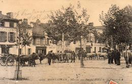 D82  MONTAUBAN Marché Aux Bœufs Place De La Laque - Montauban
