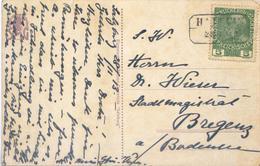 C2155-Austria-Composer W.A.Mozart Postcard From Hallein To Bregenz-1913 - 1850-1918 Impero