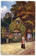ARTIST : JOTTER - THE OLD LODGE, WEMBLEY PARK (TUCK'S OILETTE) - Autres Illustrateurs