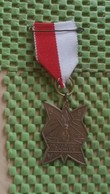 Medaille :Netherlands  - S.G.W.B Propaganda Tochten 1968 - Leusden   / Vintage Medal - Walking Association . - Nederland