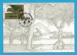 Portugal  2011  , EUROPA CEPT - Internationales Jahr Des Waldes - Maximum Card - First Day 2011.05.09 - Europa-CEPT
