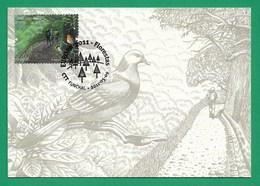 Portugal / Madeira  2011  , EUROPA CEPT - Internationales Jahr Des Waldes - Maximum Card - First Day 2011.05.09 - Europa-CEPT