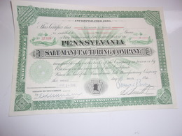 PENNSYLVANIA SALT MANUFACTURING (1940) USA - Shareholdings