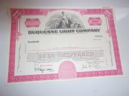 DUQUESNE LIGHT COMPANY (USA) - Shareholdings