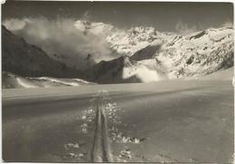 Y4880 Alpe Devero (Verbania) - Codelago E Punta D'Arbola - Panorama / Non Viaggiata - Otras Ciudades