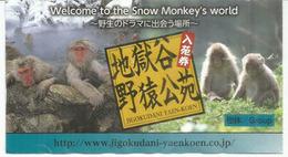 Ticket D'entree Du Parc Des Singes De Jigokudani (station Thermale De Kambayashi) Nagano. Japon. - Biglietti D'ingresso