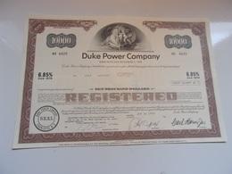 DUKE POWER COMPANY (USA) - Shareholdings