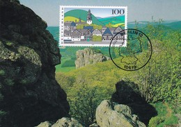 Germany Maximum Card 1995: Nature Protection; Sauerland Forest Wald, Church Kirche - Umweltschutz Und Klima