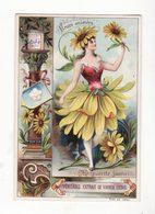 Chromo  LIEBIG    Fleurs Animées    Marguerite Jaune - Liebig