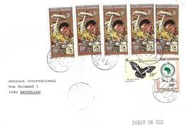 RCA CAR Centrafrique 1998 Bangui Mushroom Painting Butterfly Bank Cover - Centrafricaine (République)