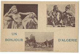 Ww2 - Guerre 39 - Cp Fm Illustrée  - Prostitution - Bonjour D'algerie - Nomade - Cartes De Franchise Militaire