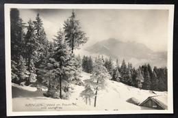 Wengen Wald Im Raureif/ Fotokarte - BE Berne