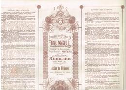 """Titre Ancien - Société Des Pétroles """"Runcu"""" - Société Anonyme -Titre De 1925 - Déco - Pétrole"""