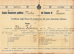 ** COMUNE DI ZOCCA.- (MO).- PAGELLA.- 1913.-** - Diplomi E Pagelle