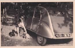 Photo Format Carte Automobile  : Une 2 Cv Citroen Sa Conductrice Et Ses 2 Chiens  Immatriculée 75 - Auto's